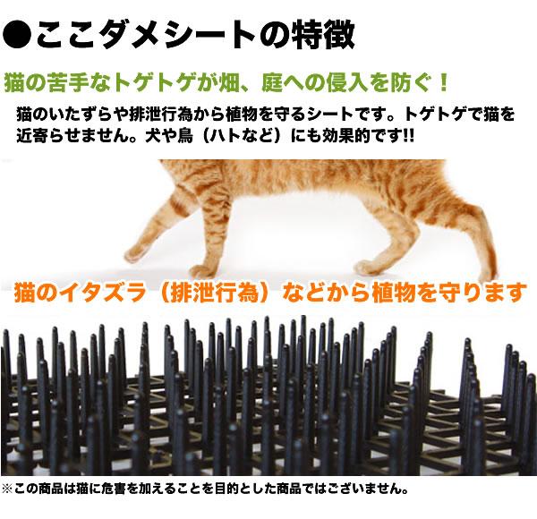 ここダメシートの特徴、猫の苦手なトゲトゲが畑、庭への侵入を防ぎます